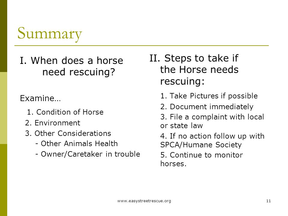 www.easystreetrescue.org11 Summary II. Steps to take if the Horse needs rescuing: 1.