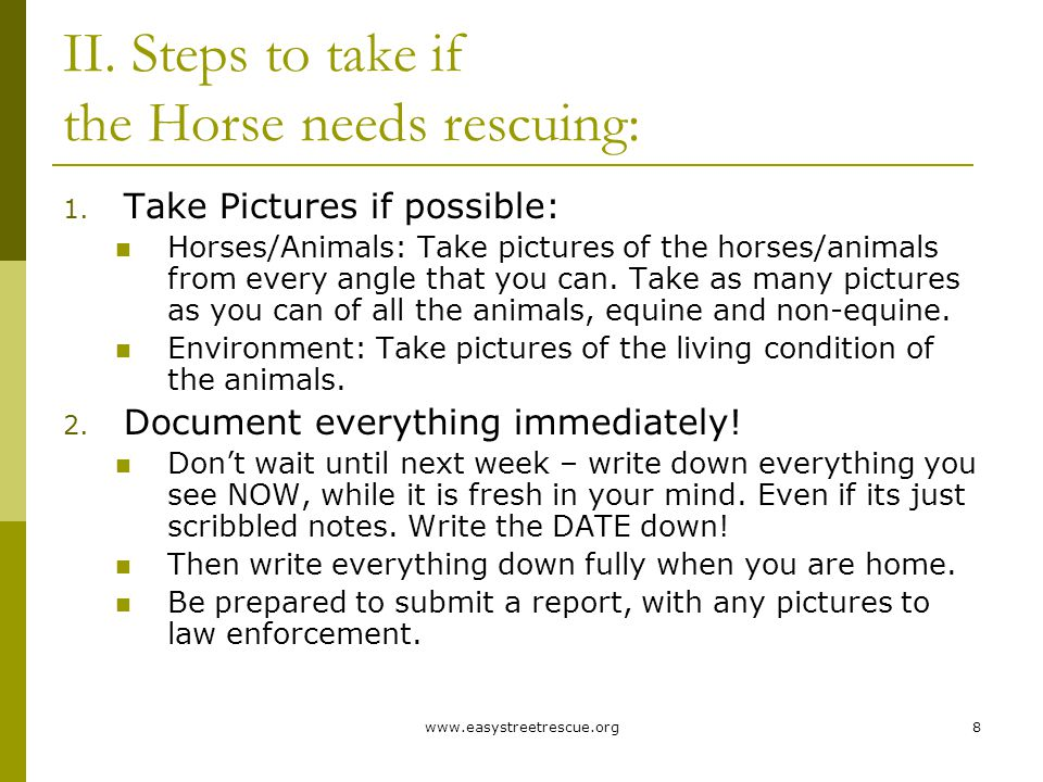 www.easystreetrescue.org8 II. Steps to take if the Horse needs rescuing: 1.