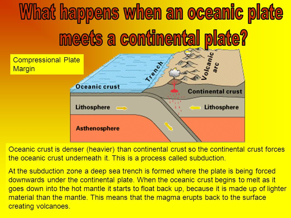 Oceanic crust is denser (heavier) than continental crust so the continental crust forces the oceanic crust underneath it.