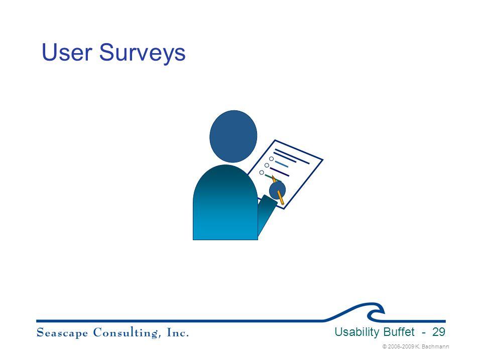 © 2006-2009 K. Bachmann Usability Buffet - 29 User Surveys