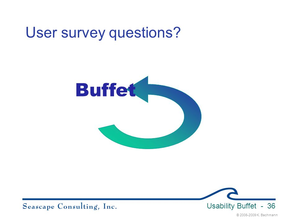 © 2006-2009 K. Bachmann Usability Buffet - 36 User survey questions? Buffet
