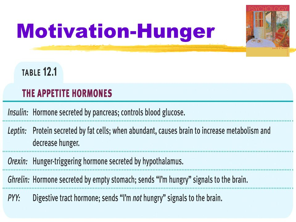 Motivation-Hunger