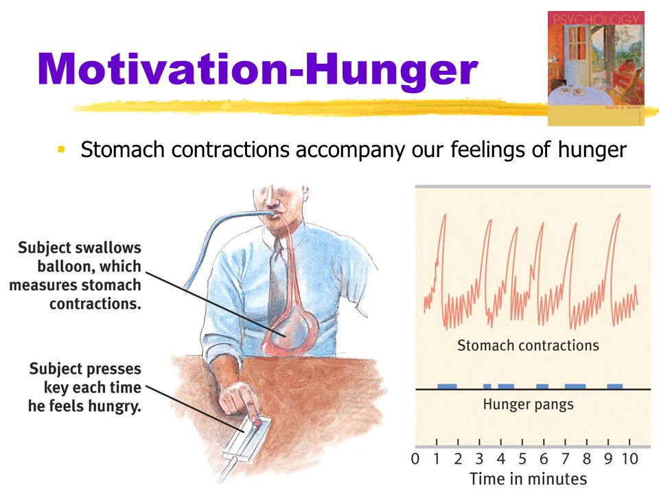 Motivation-Hunger  Stomach contractions accompany our feelings of hunger