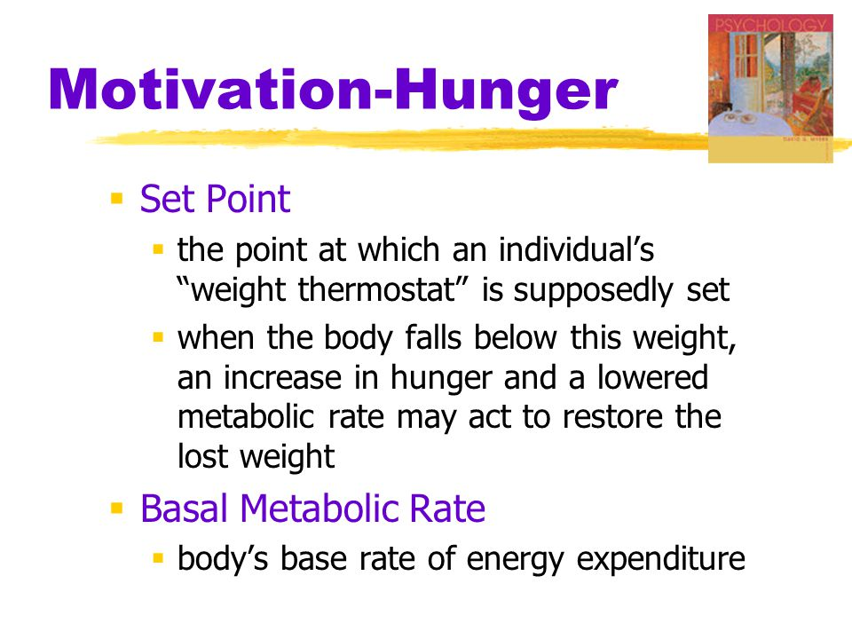 Motivation-Hunger  Set Point  the point at which an individual's weight thermostat is supposedly set  when the body falls below this weight, an increase in hunger and a lowered metabolic rate may act to restore the lost weight  Basal Metabolic Rate  body's base rate of energy expenditure