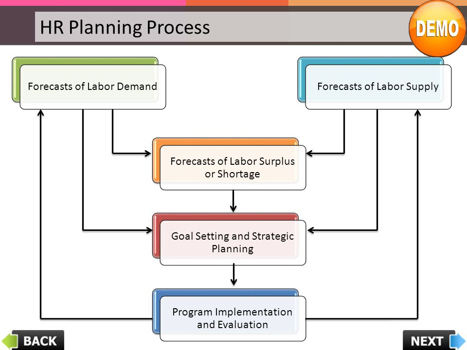 HR Planning Process Forecasts of Labor DemandForecasts of Labor Supply Forecasts of Labor Surplus or Shortage Goal Setting and Strategic Planning Prog