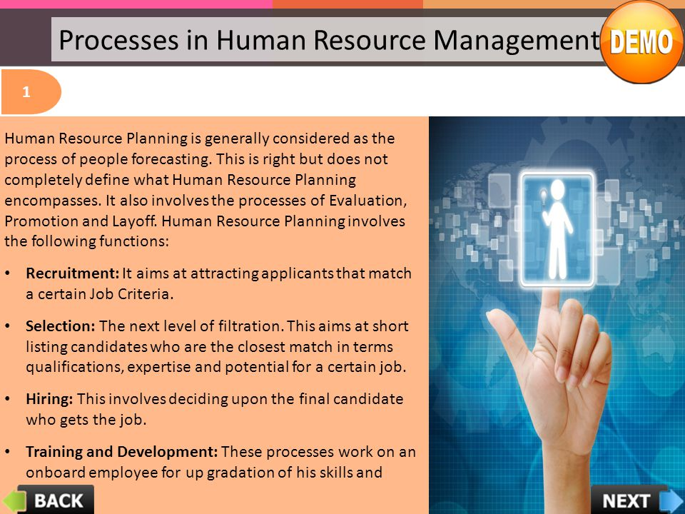 Processes in Human Resource Management 1 Human Resource Planning (Recruitment, Selection, Hiring, Training, Induction, Orientation, Evaluation, Promot