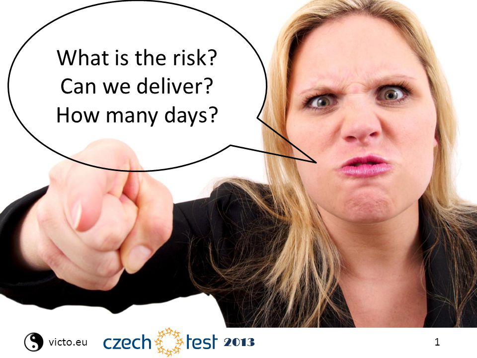 1victo.eu 2013 What is the risk? Can we deliver? How many days?