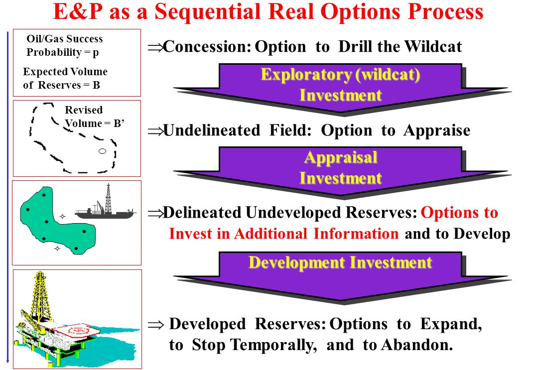 Main Petroleum Real Options and Examples u Option to Expand the Production l Depending of market scenario (oil prices, rig rates) and the petroleum re