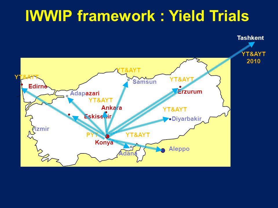 Edirne Adapazari Ankara Konya Adana Eskisehir Erzurum Diyarbakir IWWIP framework : Yield Trials Aleppo Izmir Samsun YT&AYT PYT YT&AYT Tashkent YT&AYT 2010
