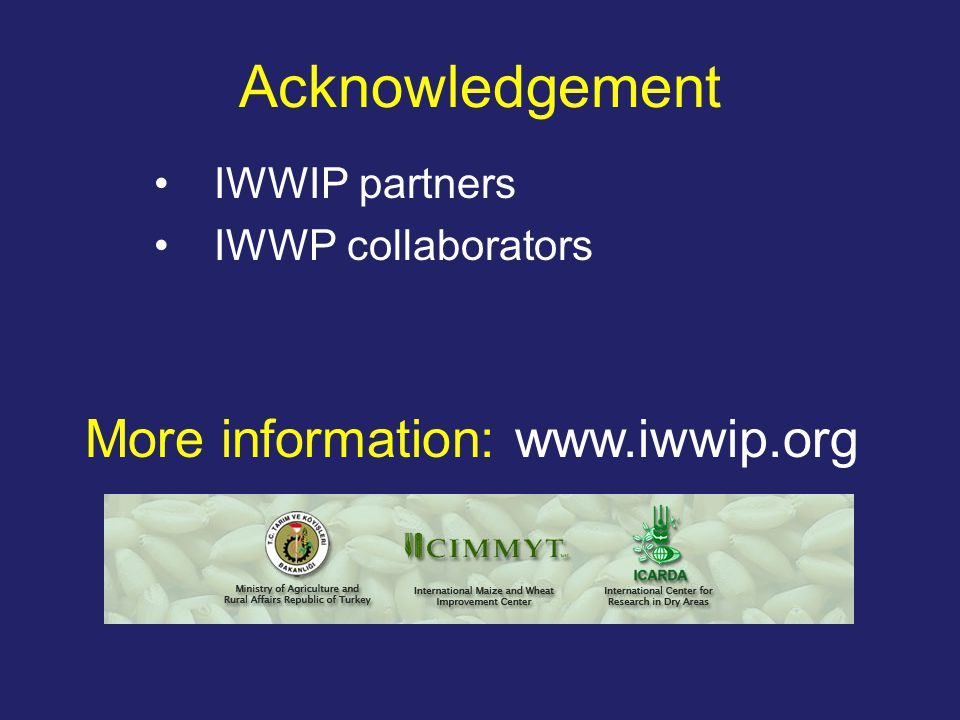 Acknowledgement IWWIP partners IWWP collaborators More information: