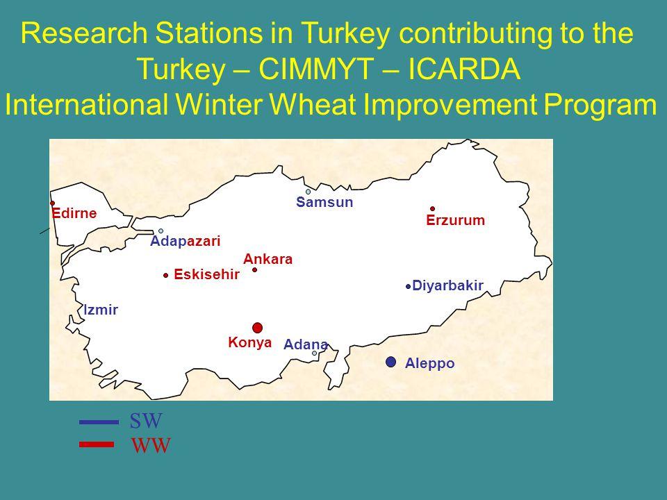 Edirne Adapazari Ankara Konya Adana Eskisehir Erzurum Diyarbakir SW WW Research Stations in Turkey contributing to the Turkey – CIMMYT – ICARDA International Winter Wheat Improvement Program Aleppo Izmir Samsun
