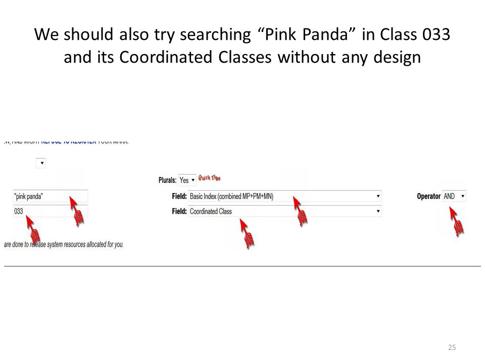 """We should also try searching """"Pink Panda"""" in Class 033 and its Coordinated Classes without any design 25"""