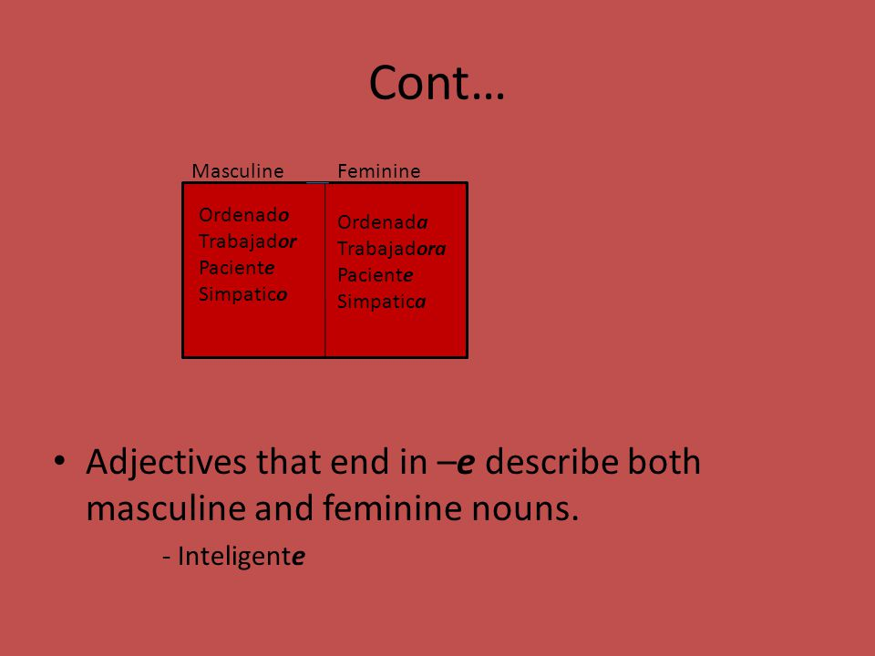 Cont… Adjectives that end in –e describe both masculine and feminine nouns.