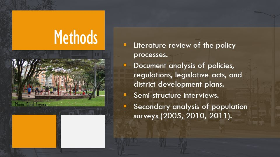  Literature review of the policy processes.