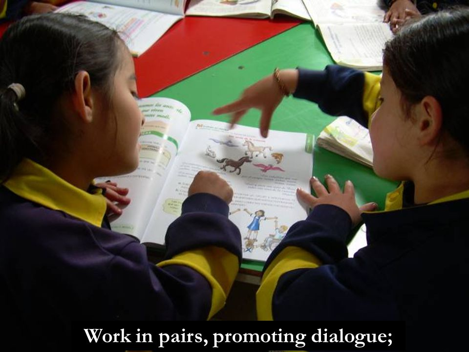 Work in pairs, promoting dialogue;