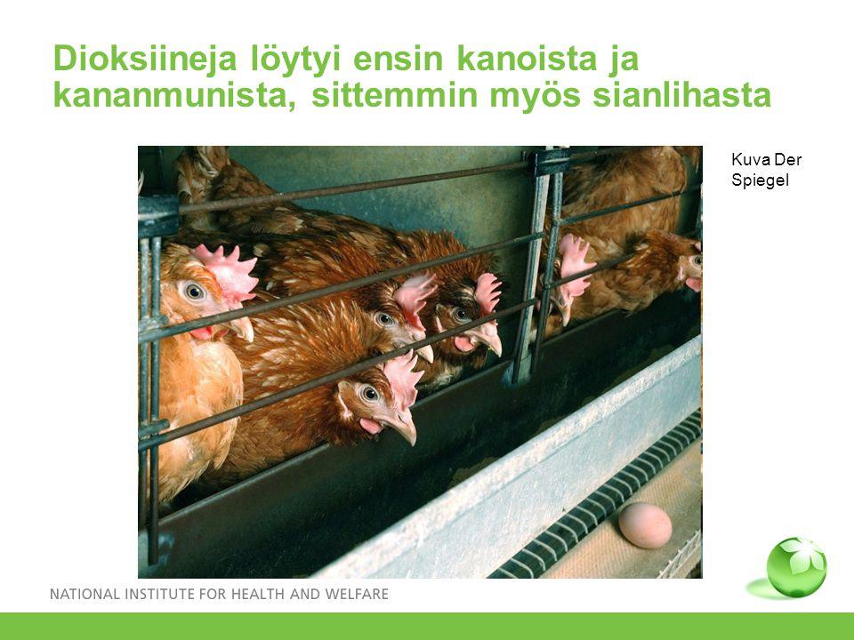Dioksiineja löytyi ensin kanoista ja kananmunista, sittemmin myös sianlihasta Kuva Der Spiegel