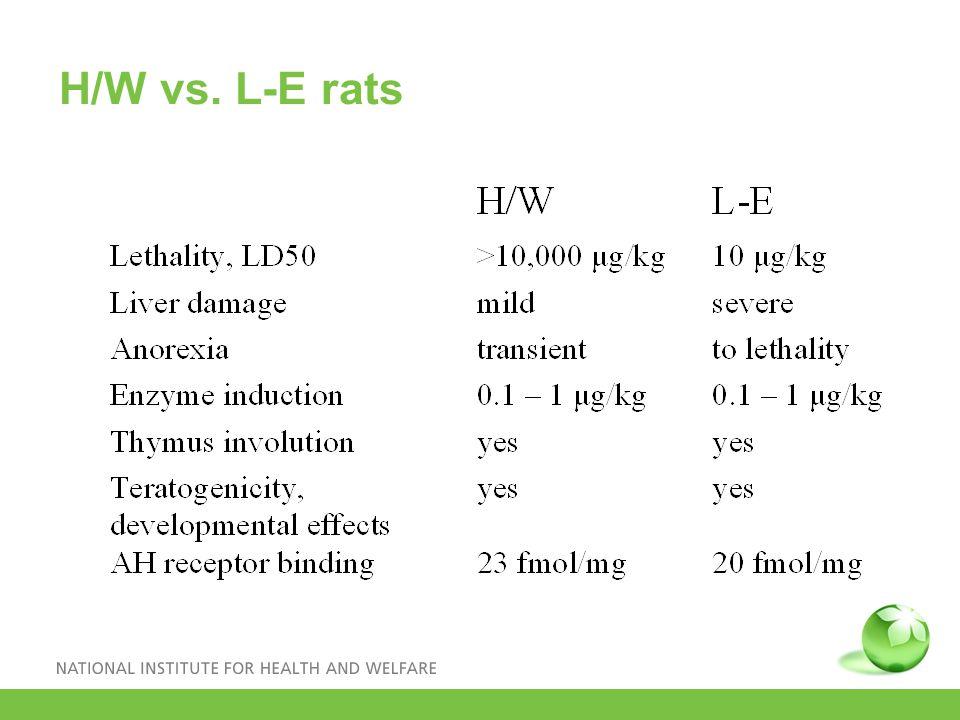 H/W vs. L-E rats