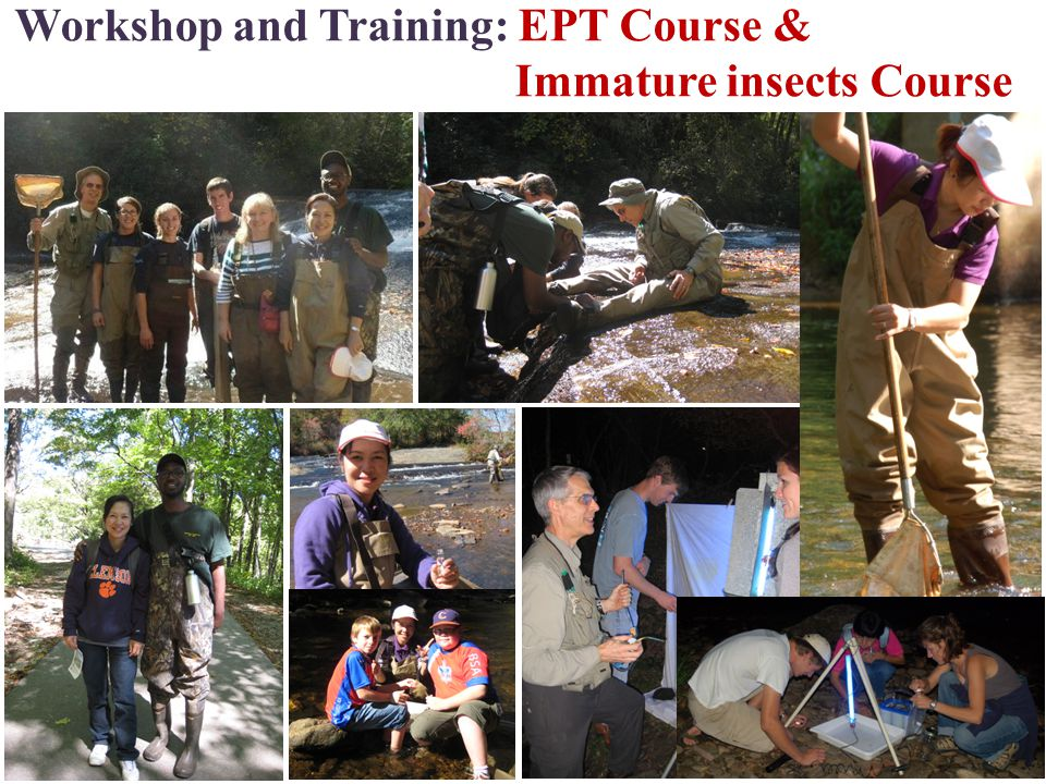 Workshop and Training: EPT Course & Immature insects Course 11