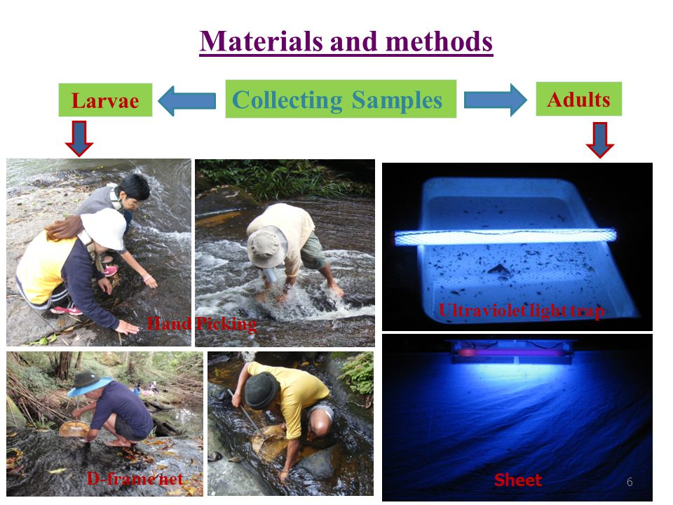 Materials and methods (cont.) Water quality measurements  Water temperature ( ° C)  Air temperature ( ° C)  Stream depth (cm) and width (m)  Current velocity (m/s)  Electrical conductivity (µs/cm)  Total dissolved solids (mg/L)  Dissolved oxygen: DO (mg/L)  pH pH meter (HI 98130) DO meter (YSI 550A) 7
