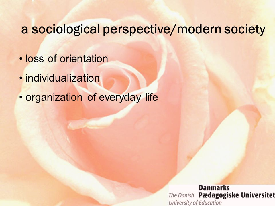loss of orientation individualization organization of everyday life a sociological perspective/modern society