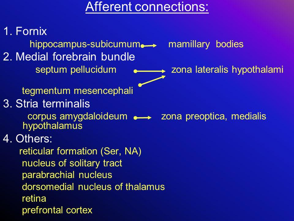 Afferent connections: 1. Fornix hippocampus-subicumum mamillary bodies 2. Medial forebrain bundle septum pellucidum zona lateralis hypothalami tegment