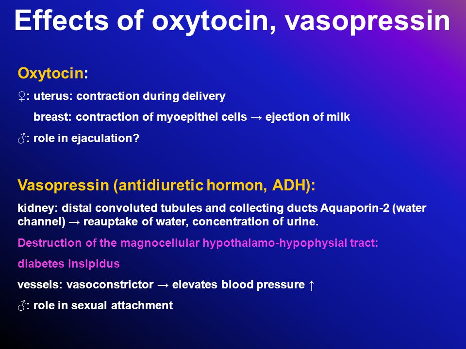 Effects of oxytocin, vasopressin Oxytocin: ♀: uterus: contraction during delivery breast: contraction of myoepithel cells → ejection of milk ♂: role i