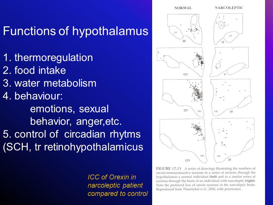 Functions of hypothalamus 1. thermoregulation 2. food intake 3. water metabolism 4. behaviour: emotions, sexual behavior, anger,etc. 5. control of cir