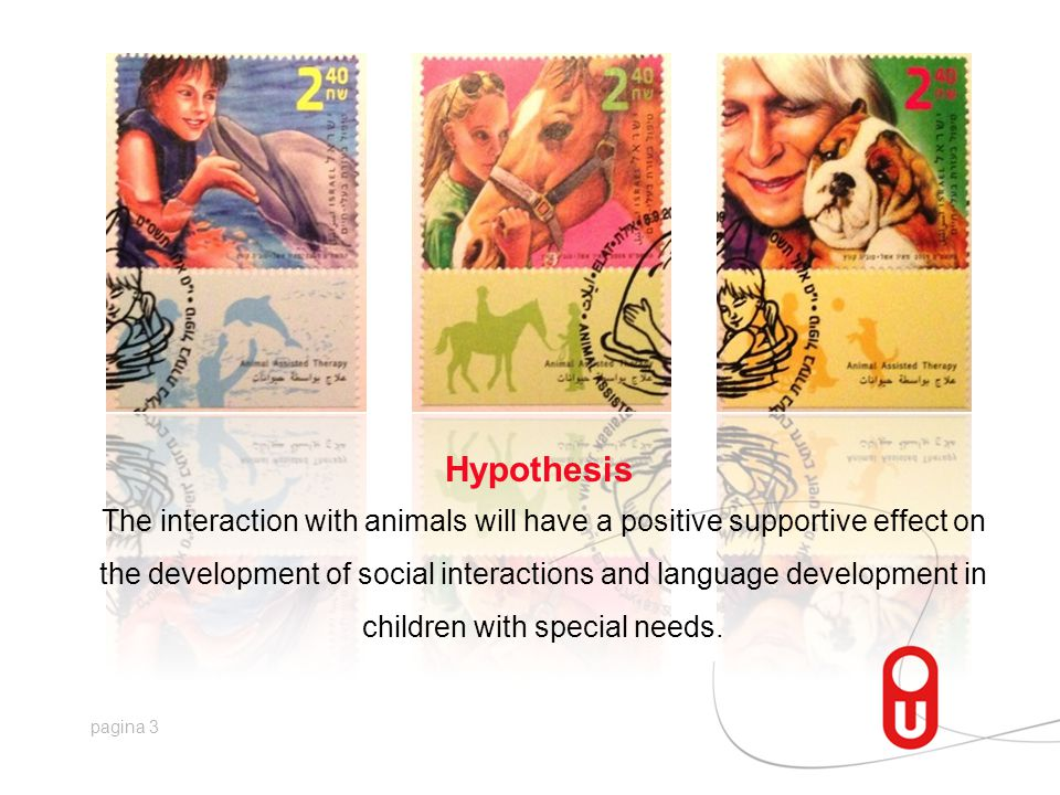 pagina 3 Hypothesis The interaction with animals will have a positive supportive effect on the development of social interactions and language development in children with special needs.