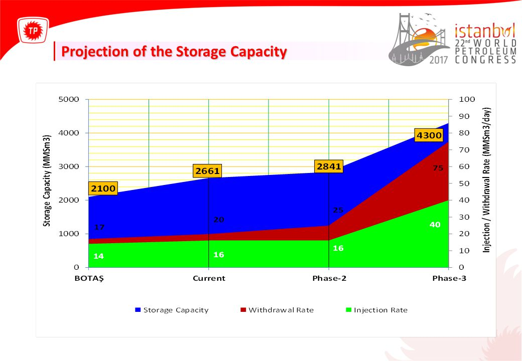 Projection of the Storage Capacity
