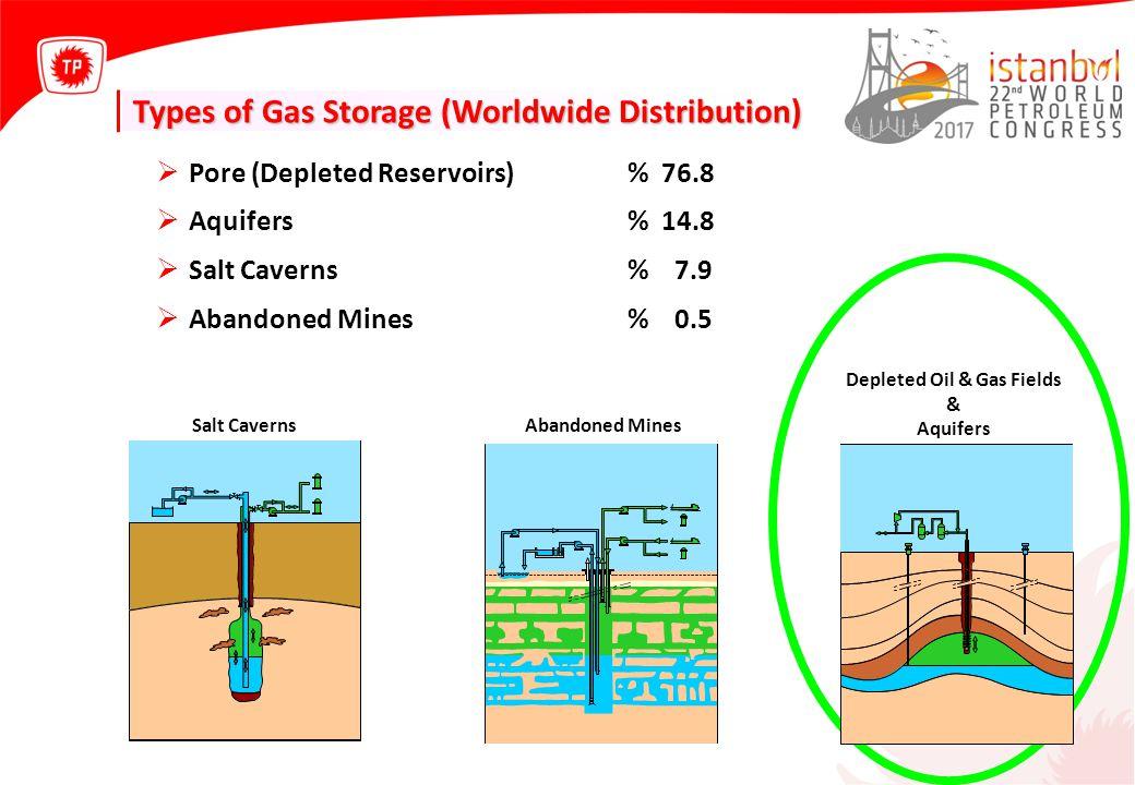 Pore (Depleted Reservoirs)% 76.8  Aquifers% 14.8  Salt Caverns% 7.9  Abandoned Mines% 0.5 Salt Caverns Abandoned Mines Depleted Oil & Gas Fields