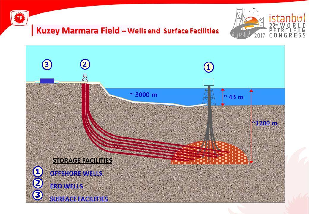 Phase-II Project (General) ≈2.3 km - 20 Pipeline Construction Additional Process Facility Design & Additional Wells Drilling Integrating Batı Sinekli and D.Köy Osmancık Res.