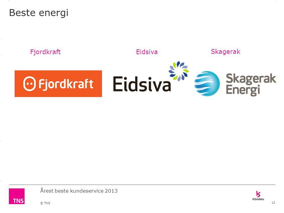 3.14 X AXIS 6.65 BASE MARGIN 5.95 TOP MARGIN 4.52 CHART TOP 11.90 LEFT MARGIN 11.90 RIGHT MARGIN DO NOT ALTER SLIDE MASTERS – THIS IS A TNS APPROVED TEMPLATE Årest beste kundeservice 2013 © TNS Beste energi 12 FjordkraftEidsiva Skagerak