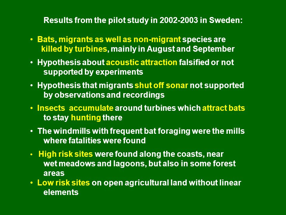 Results from the pilot study in 2002-2003 in Sweden: • Bats, migrants as well as non-migrant species are killed by turbines, mainly in August and September • Hypothesis about acoustic attraction falsified or not supported by experiments • Hypothesis that migrants shut off sonar not supported by observations and recordings • Insects accumulate around turbines which attract bats to stay hunting there • The windmills with frequent bat foraging were the mills where fatalities were found • High risk sites were found along the coasts, near wet meadows and lagoons, but also in some forest areas • Low risk sites on open agricultural land without linear elements