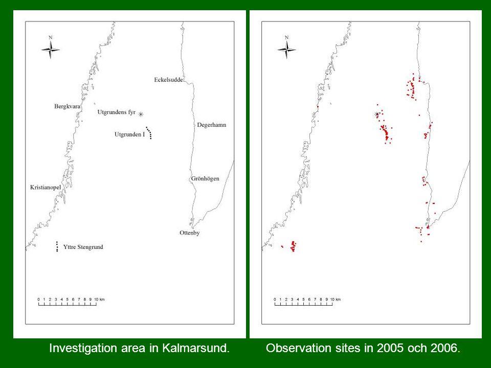 Investigation area in Kalmarsund. Observation sites in 2005 och 2006.