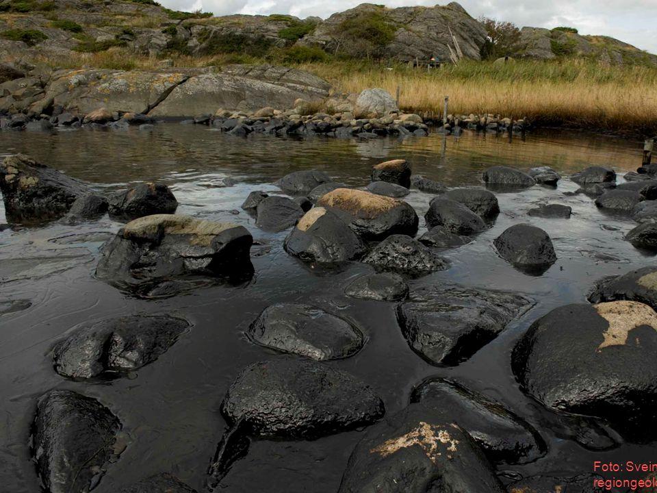 Foto: Svein Dahlgren regiongeolog