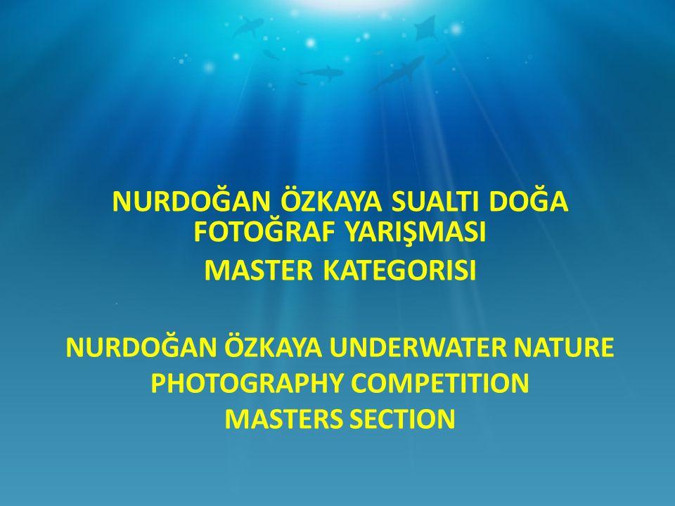 NURDOĞAN ÖZKAYA UNDERWATER NATURE PHOTOGRAPHY COMPETITION MASTERS SECTION NURDOĞAN ÖZKAYA SUALTI DOĞA FOTOĞRAF YARIŞMASI MASTER KATEGORISI