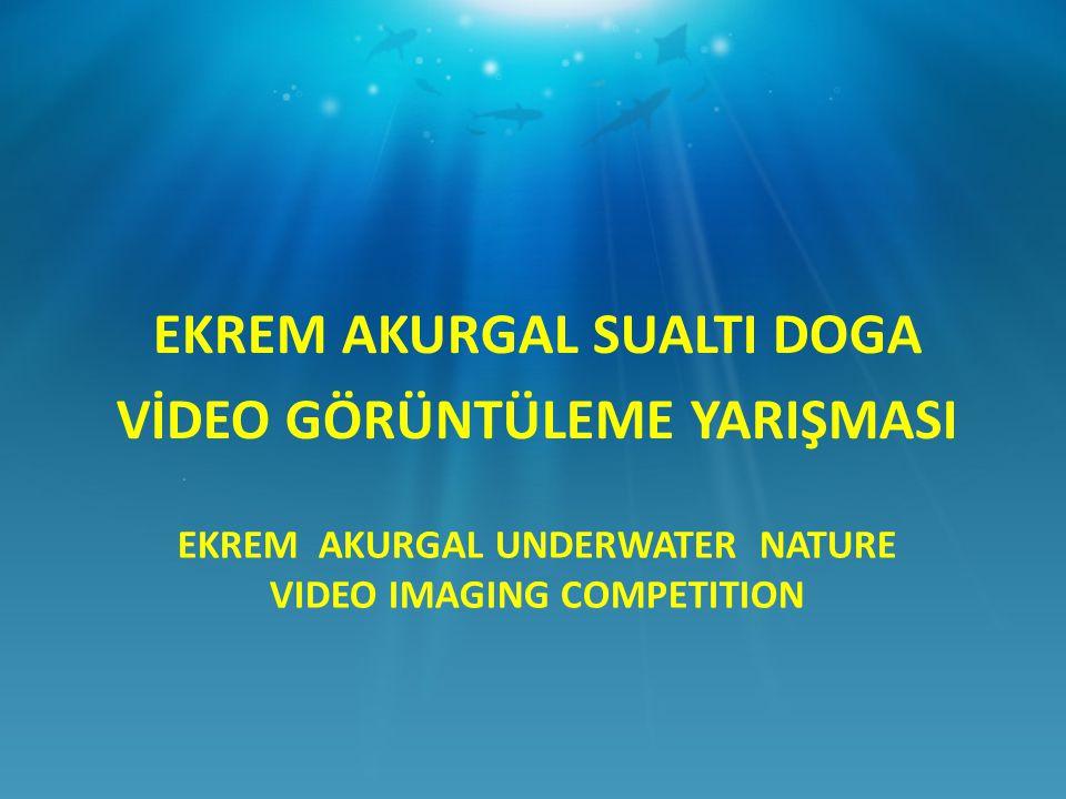 EKREM AKURGAL UNDERWATER NATURE VIDEO IMAGING COMPETITION EKREM AKURGAL SUALTI DOGA VİDEO GÖRÜNTÜLEME YARIŞMASI
