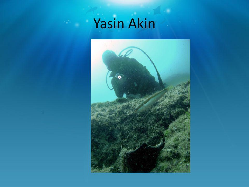 Yasin Akin