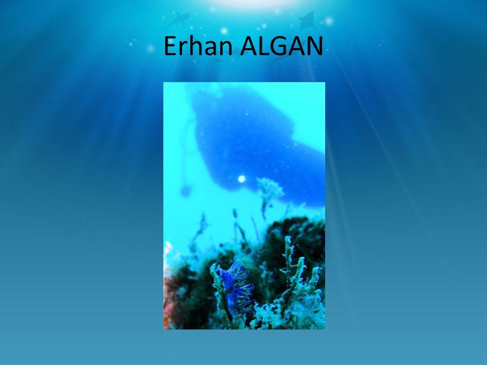 Erhan ALGAN