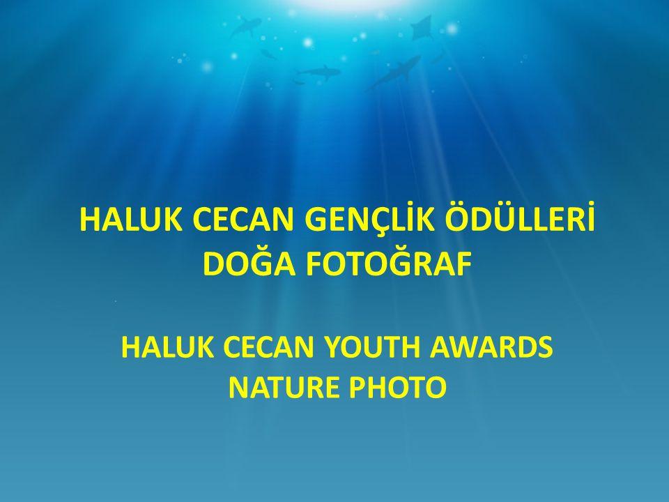 HALUK CECAN YOUTH AWARDS NATURE PHOTO HALUK CECAN GENÇLİK ÖDÜLLERİ DOĞA FOTOĞRAF