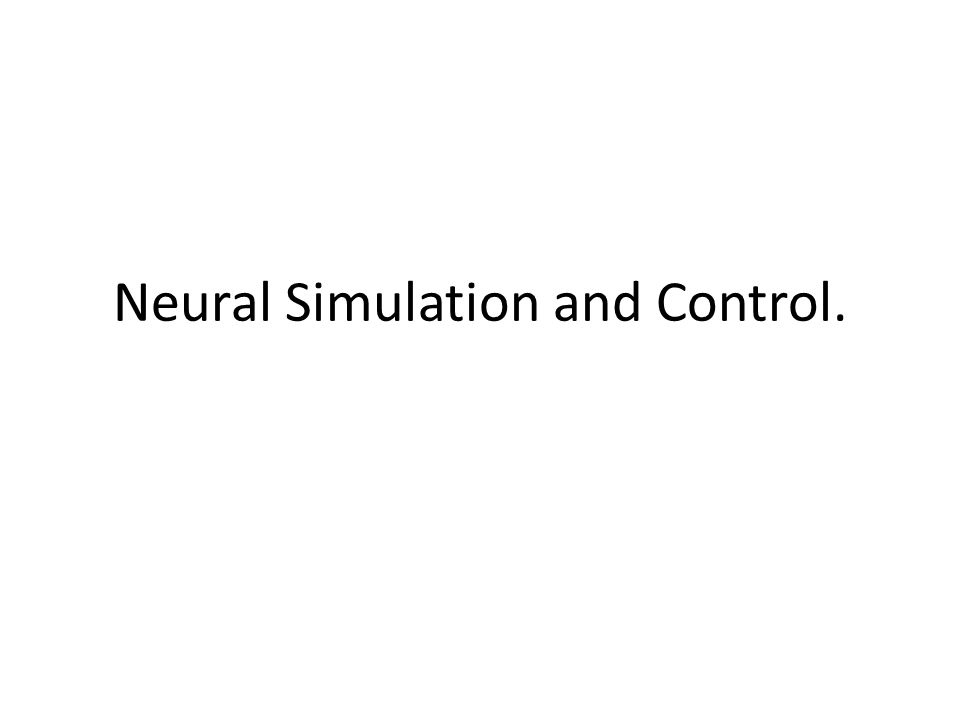 Neural Simulation and Control.
