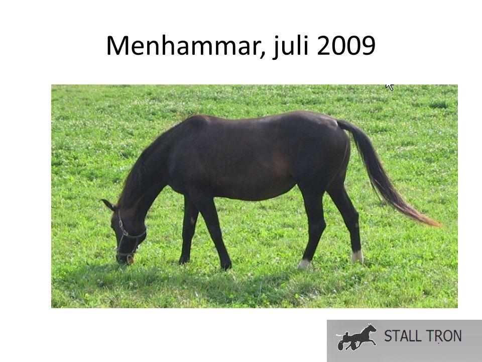 Menhammar, juli 2009