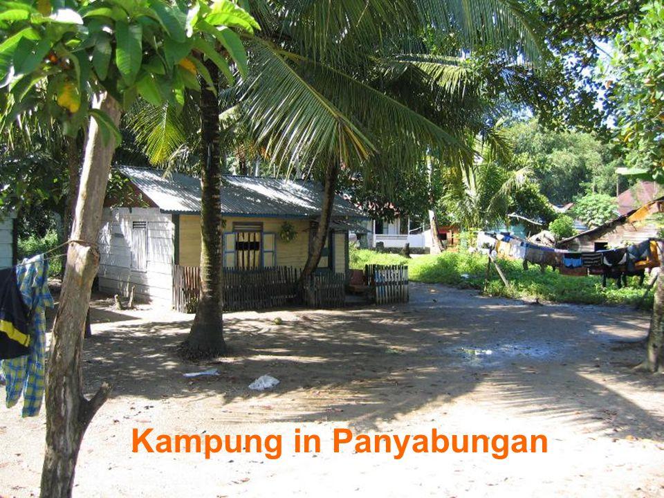 Damaged bridge in Panyabungan