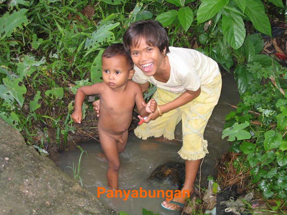 Kampung in Panyabungan