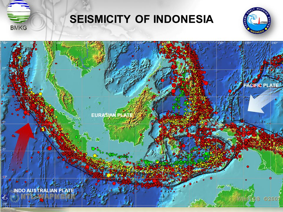 SEISMICITY OF INDONESIA INDO AUSTRALIAN PLATE PACIFIC PLATE. EURASIAN PLATE