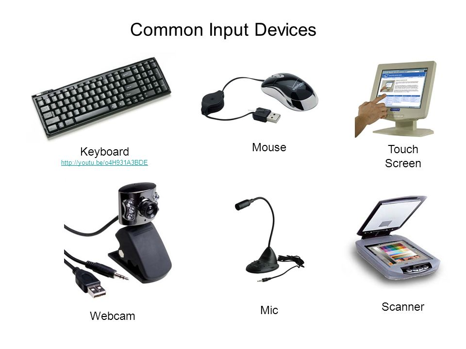 Common Input Devices Keyboard http://youtu.be/o4H931A3BDE Mouse Webcam Touch Screen Mic Scanner