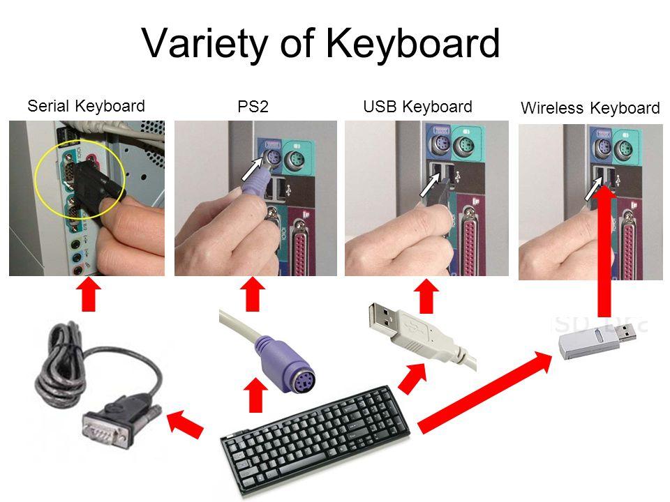 Variety of Keyboard PS2 Keyboard USB Keyboard Wireless Keyboard Serial Keyboard