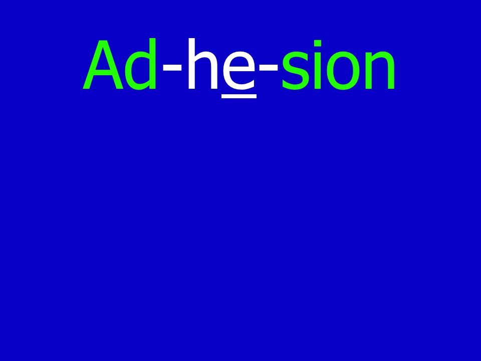 Ad-he-sion