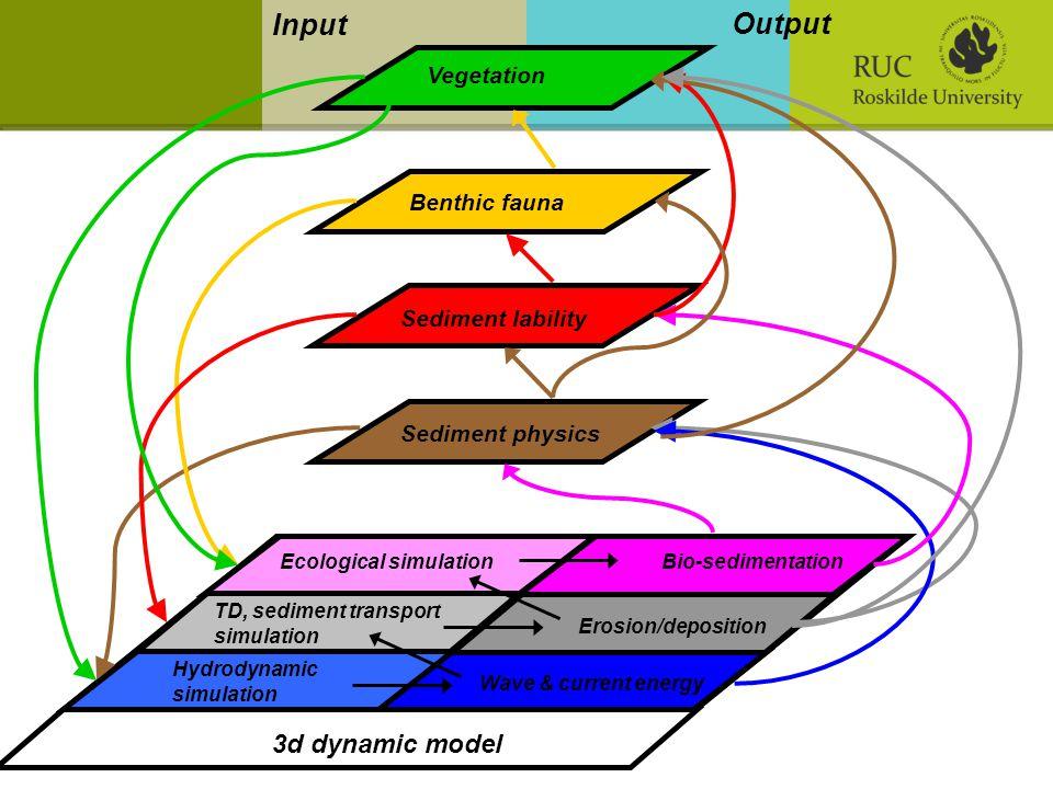 3d dynamic model Sediment physics Sediment lability Benthic fauna Vegetation Wave & current energy Input Output Hydrodynamic simulation TD, sediment transport simulation Ecological simulation Erosion/deposition Bio-sedimentation