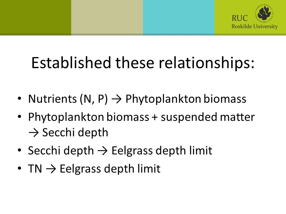 Established these relationships: • Nutrients (N, P) → Phytoplankton biomass • Phytoplankton biomass + suspended matter → Secchi depth • Secchi depth →